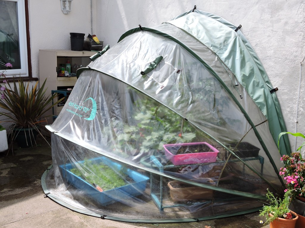 horti hood 90 folding greenhouse hortihood 90 pvc greenhouse