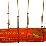 Prop-a-Plant Cane Support System gives 6 plants per growbag