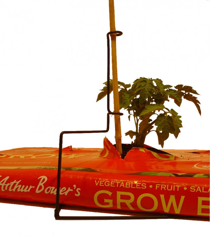39 Ingenious Diagrams For Your Home And Garden Projects: Growbag Grow Bag Cane Plant