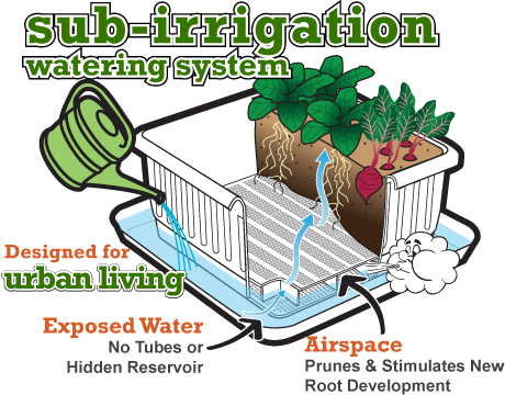 Urbin Grower sub-irrigation watering system for urban living
