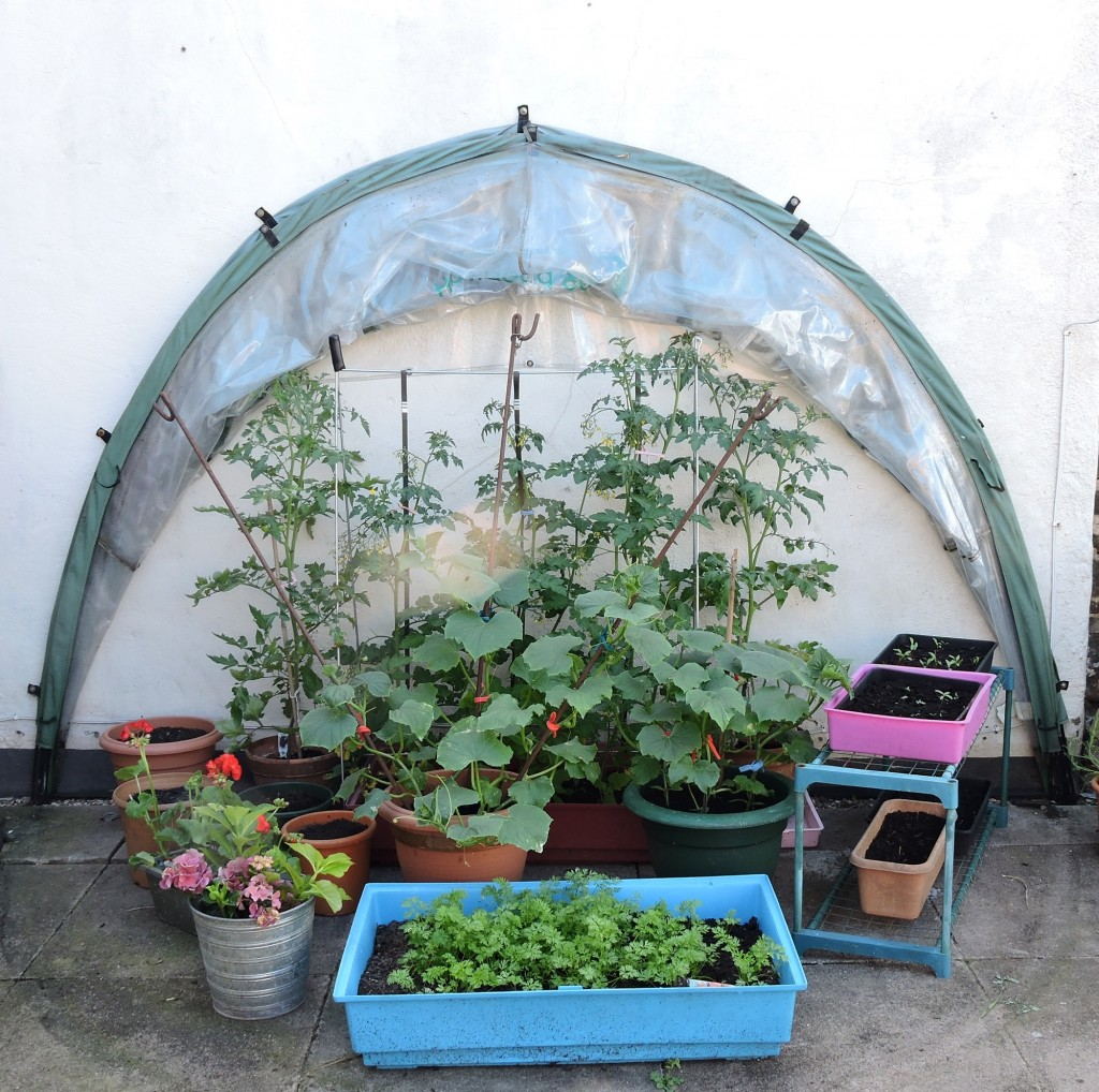 HortiHood 90 folding greenhouse